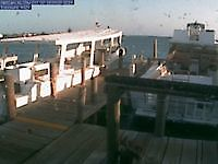 Webcam harbor in Utila Utila Honduras - Webcams Abroad live images