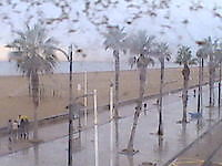 Webcams in Valencia Valencia Spain - Webcams Abroad live images